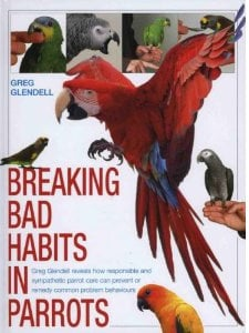 Should My Parrot's Wings Be Clipped by Greg Glendell | Beauty of Birds