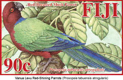 Vanua Levu Red-Shining Parrots: Species: Scientific: Prosopeia tabuensis atrogularis