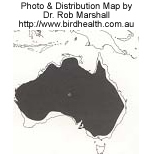 Galah Distribution Map