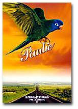 Paulie - the Blue-crowned Conure