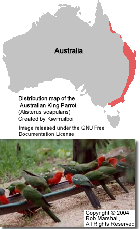 Distribution Map for the Australian King Parrot