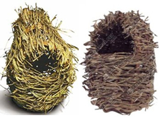 Finch Nests make great foraging toys - Just fill them up!
