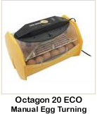 Octagon 20 ECO Manual Egg Turning
