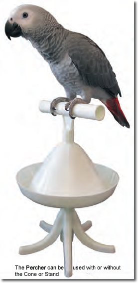 The Percher can be used without the Stand to pick a bird up, to hold it, or to carry a pet around