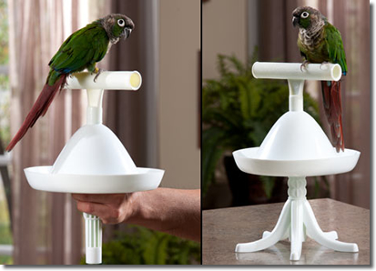 The Percher - multifaceted - can be used as a portable stand or a perch!