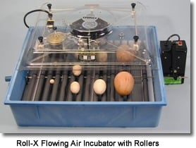 Roll-X Flowing Air Incubator with Rollers