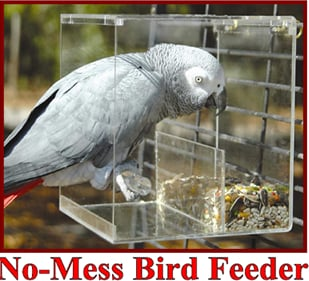 Tidy Seed No Mess Scatter-free Bird Feeder for Larger Birds!