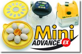 Mini Advance EX Incubator