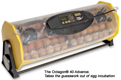 The Octagon® 40 Advance. Takes the guesswork out of egg incubation