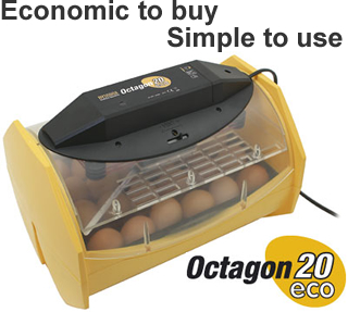 Octagon 20 ECO - The High Quality and Economical Incubator!