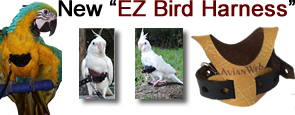 The Avianweb EZ Bird Harness