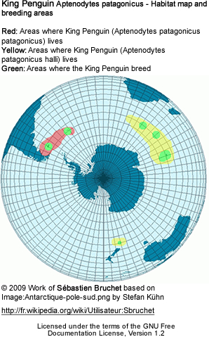 Range of the King Penguin