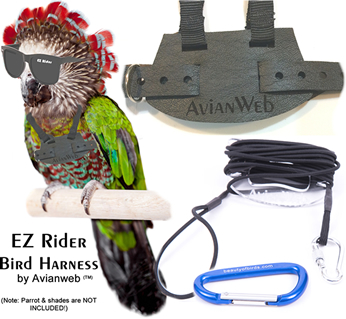 EZ Rider Bird Harness