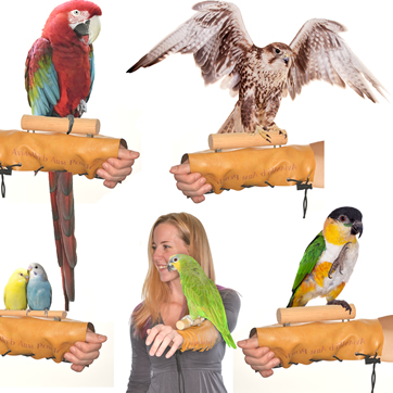 Avianweb Bird Arm & Hand Perch